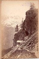 Photo Ancienne Sur Carton - A Identifier : Le Chapeau Cabin ? ( Dim 16x10 Cm) - Photos