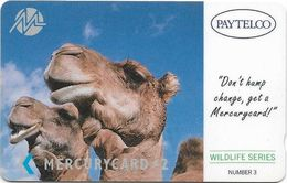UK (Paytelco) - Wildlife Series Camels - PYWS004 - 1PAYD - 30.901ex, Used - Reino Unido