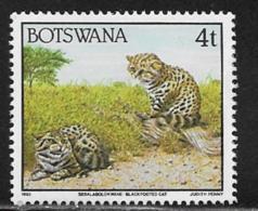 Botswana Scott # 520 MNH Blackfooted Cats, 1992 - Botswana (1966-...)
