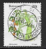 Botswana Scott # 587 Used Christmas, Plant, 1995 - Botswana (1966-...)