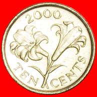 + FLOWER (1999-2009): BERMUDA ★ 10 CENTS 2000 MINT LUSTER! LOW START ★ NO RESERVE! - Bermuda