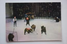 Soviet Circus. Bear Playing HOCKEY - USSR Postcard  - 1960s - Rare! - Winter Sports