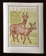 Albania 1962; Animals & Fauna; Mammals; MNH, Neuf** Postfrisch; CV 180 Euro!! - Albanien