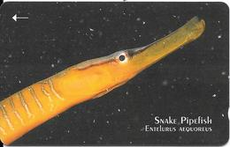 CARTE-MAGNETIQUE-JERSEY-£5-SNAKE PIPEFISH-TBE- - Poissons