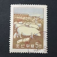 ◆◆◆Korea DPR  1959 Pig Farm 5CH  USED   AA3975 - Corea Del Norte