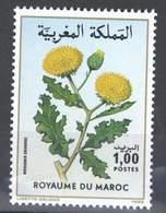 MOROCCO FLORE FLEURS FLOWERS FLORA 1986 - Morocco (1956-...)