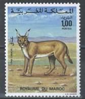 MOROCCO PROTECTION DE LA NATURE FAUNE LYNX CARACAL ANIMALS - Morocco (1956-...)