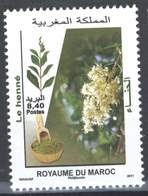MOROCCO PLANTES LE HENNE , PLANTS 2011 - Morocco (1956-...)