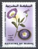 MOROCCO FLORE FLEURS FLOWERS JARDINAGE 2008 - Morocco (1956-...)