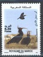 MOROCCO FAUNE IBIS CHAUVE OISEAUX BIRDS 2011 - Morocco (1956-...)