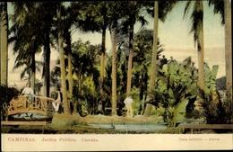 Cp Campinas Brasilien, Jardim Publico, Cascata - Autres