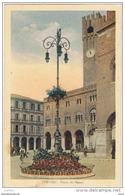 TREVISO:  PIAZZA  DEI  SIGNORI  -  FP - Treviso
