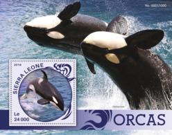 Sierra Leone   2016  Fauna  Orcas Whales - Sierra Leone (1961-...)