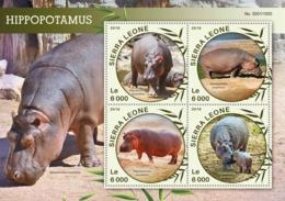 Sierra Leone   2016  Fauna  Hippopotamus - Sierra Leone (1961-...)