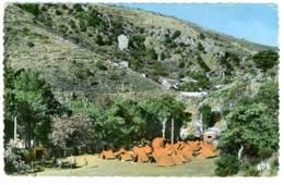 43 - B3587CPSM - LANGEAC CHAZELLES - Camping Colonie SIMCA - Bon état - HAUTE-LOIRE - Non Classés