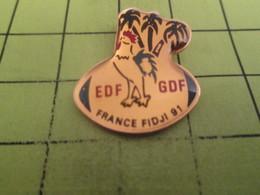 115b Pin's Pins / Beau Et Rare / THEME : SPORTS / RUGBY FRANCE FIDJI COQ TRICOLORE EDF GDF - Rugby