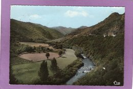 34 AVENE Les BAINS Vue Pittoresque De La Vallée PAS COURANTE - Autres Communes