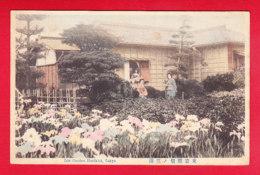 E-Japon-20P206  Le Jardin Des Iris à TOKYO, Iris Garden, Orikiri, Animation, Cpa - Tokio