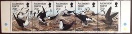 Ascension 1988 Birds MNH - Sin Clasificación