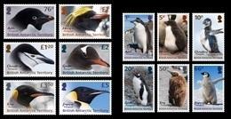 British Antarctic Territory BAT 2018 Penguins And Chicks Definitive 12v MNH - British Antarctic Territory  (BAT)
