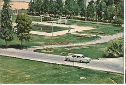 CPSM, Arabie Saoudite ,N°10,  Riyadh , College Of  Agriculture, Ed. Minst. Infor. - Arabie Saoudite