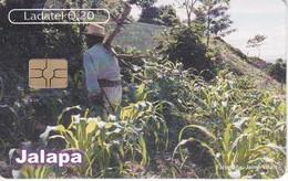 TARJETA DE GUATEMALA DE JALAPA - SAN CARLOS ALZATATE  (LADATEL-TELGUA) - Guatemala