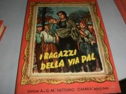 LIBRO I RAGAZZI DELLA VIA PAL - Libri, Riviste, Fumetti