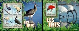 Togo 2019, Animals, Ibis, 4val In BF +BF - Grues Et Gruiformes