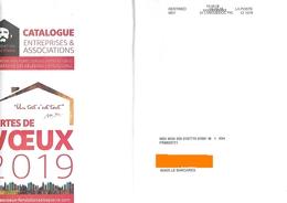 Destineo MD7 34 Languedoc Pic Sur Enveloppe Illustrée Abbé Pierre Cartes De Voeux 2019 - Marcofilia (sobres)