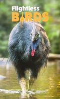 Australia 2019 Stamp Pack 3 V MNH  Flightless Birds Bird Penguin Ostrich Emu Southern Cassowary - Struisvogels