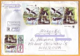 2000 2005 2006 Registered Letter Belarus - Moldova.  Storks, Birds, Eagles Fauna. - Cigognes & échassiers