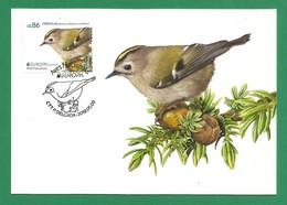 Portugal / Acores   2019 , EUROPA CEPT Birds - Aves Nacionals - Maximum Card - CTT P. Delgada 2019.05.09 - 2019