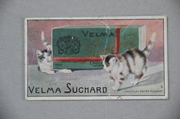 Image Chocolat Velma Suchard, Chatons - Suchard