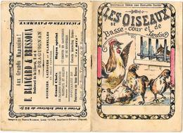 APPRENTISSAGE DE LA LECTURE - LES OISEAUX DE BASSE-COUR -années 1910 - Série ENFANTS SAGES - BLANCARD BRESSOUX DRAGUIGNA - Diplomas Y Calificaciones Escolares
