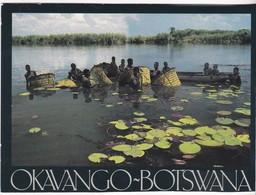 Okavango-Botswana - Photography Anthony Bannister - Botswana