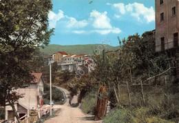 Cartolina Montereggio Scorcio Panoramico - Massa