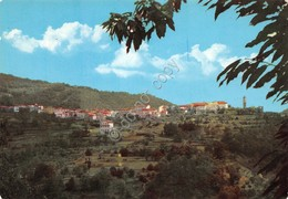 Cartolina Montereggio Panorama 2 - Massa