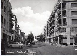 Veneto - Treviso - Viale L. Cadorna - - Treviso