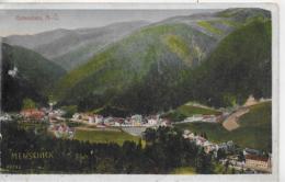 AK 0275  Gutenstein - Menschick-Karte Um 1916 - Gutenstein