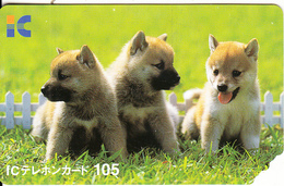 JAPAN - Dogs, IC Telecard By NTT, Exp.date 30/09/08, Used - Dogs