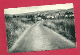 C.P. Grandrieu = Panorama - Sivry-Rance