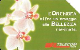 CARTE MAGN-ITALIE-ORCHIDEA-R°Glacé-UTILISE-TBE-RARE - Fleurs