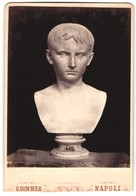 Fotografie G. Sommer, Napoli, Büste Von Unbek. Künstler, Augusto, Vaticano - Ohne Zuordnung