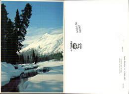 621907,Peaceful Solitude Of Winter Landschaft Alaska - Vereinigte Staaten