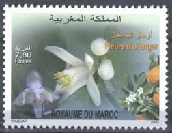 MOROCCO FLEURS D' ORANGER 2009 - Morocco (1956-...)