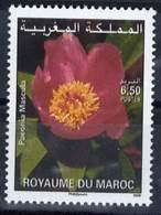 MOROCCO FLORE FLEURS FLOWERS JARDINAGE 2006 - Morocco (1956-...)