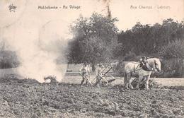 Au Village STAR Aux Champs Labours Middelkerke - Middelkerke