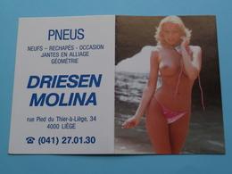 Pneus DRIESEN MOLINA Liège 1994 (Femme Nude / Naakt / Naked) ( Zie/voir Photo Svp ) ! - Calendriers