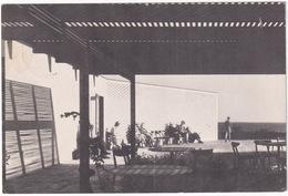 Humlebæk - Louisiana : Pergola Outside The Cafetaria - Museum For Moderne Kunst - (Danmark) - Denemarken