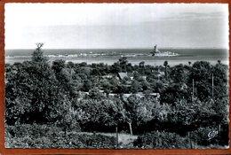 50  CPSM Petit Format De SAINT-VAAST-LA-HOUGUE  Vue Panoramique Du Fort Et De La Hougue  Joli Plan   1958  Très Bon état - Saint Vaast La Hougue